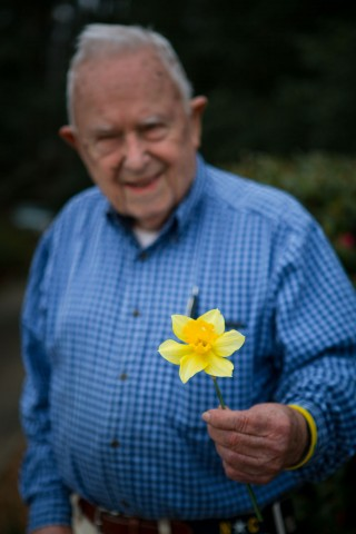 Voles don't eat daffodil bulbs
