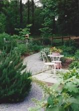 landscaped back yard